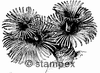 diving stamps motif 1006 - Biology