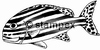 diving stamps motif 2994 - Fish