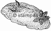 diving stamps motif 1003 - Nudibranch/Slug