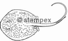 diving stamps motif 3610 - Ray/Skate
