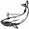 diving stamps motif 3802 - Whale